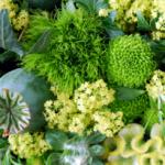 Зеленые цветы – оригинальное решение