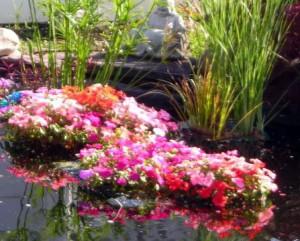 плавающий цветник