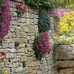 Сухая стенка – декоративный элемент сада