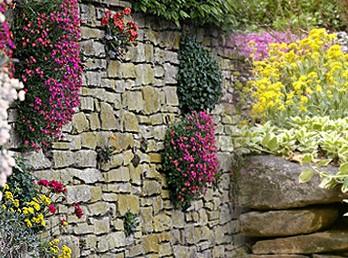 Стенка – декоративный элемент сада