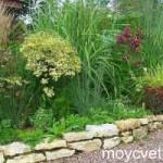 Стили садов: Прерийный сад