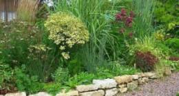 прерийный сад